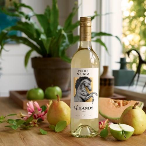 14 Hands Pinot Grigio White Wine Perspective: top
