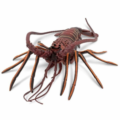 Safari Ltd®  Spiny Lobster, Toy Figurine Perspective: top