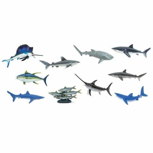 Pelagic Fish TOOB Perspective: top