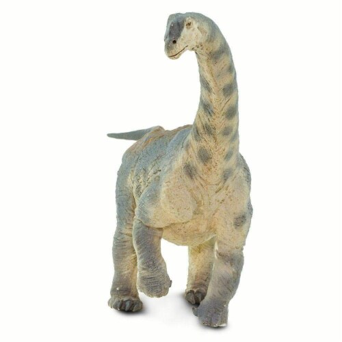 Camarasaurus Toy Perspective: top