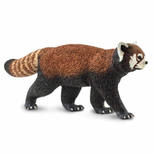 Red Panda Perspective: top
