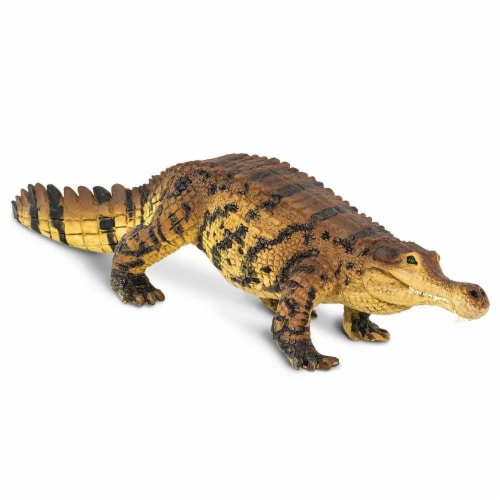 Sarcosuchus Toy Perspective: top