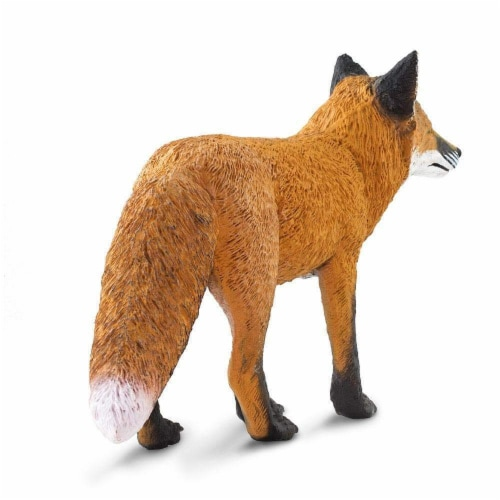 Red Fox Perspective: top