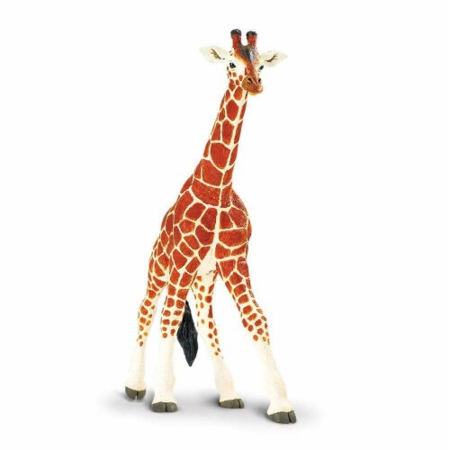 Reticulated Giraffe Toy Perspective: top