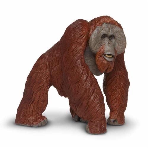 Bornean Orangutan Toy Perspective: top