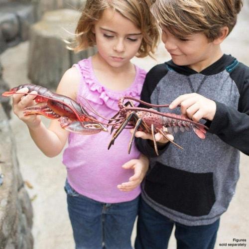 Safari Ltd®  Maine Lobster, Toy Figurine Perspective: top
