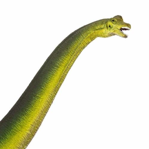 Brachiosaurus Toy Perspective: top
