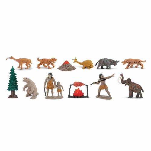 Prehistoric Life TOOB Perspective: top