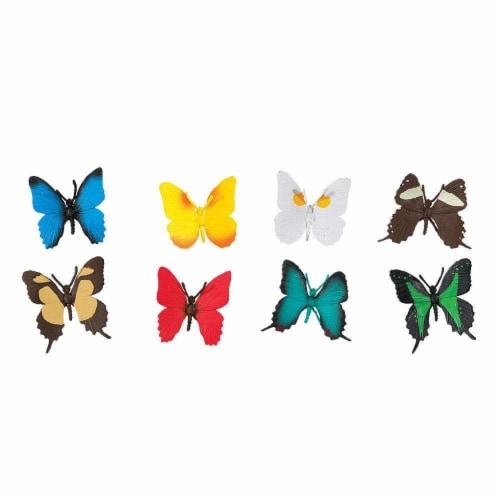 Butterflies TOOB Perspective: top