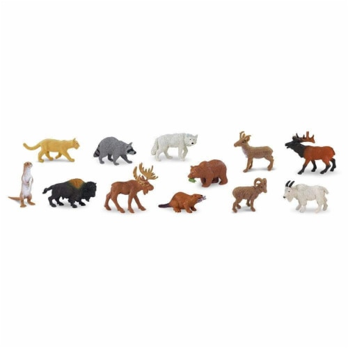 North American Wildlife TOOB Perspective: top