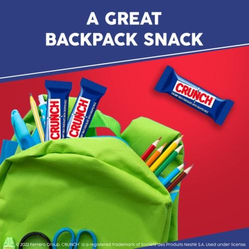 Crunch® 100% Milk Chocolate Fun Size Halloween Candy Bars Perspective: top