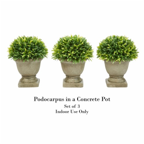 Set of 3 Artificial Podocarpus Grass Plant in Concrete Pot 7.5 Inch Decorative Faux Indoor Perspective: top