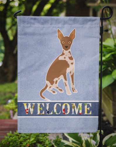 Tan Abyssinian or African Hairless Dog Welcome Flag Garden Size Perspective: top