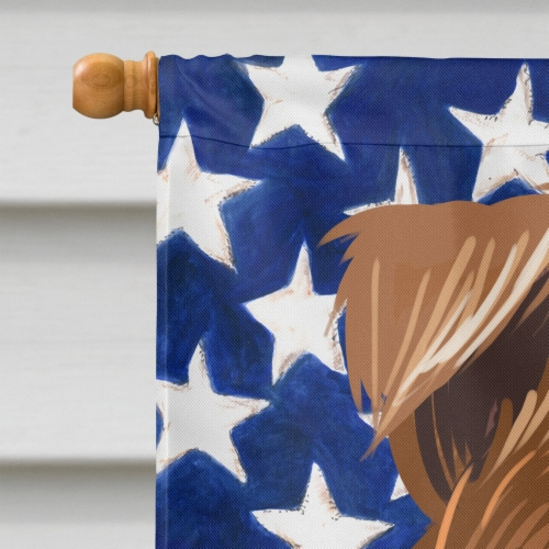 Fox Terrier Wire Dog American Flag Flag Canvas House Size Perspective: top