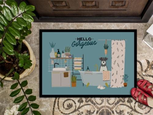 Salt and Pepper Miniature Schnauzer in Bathtub Indoor or Outdoor Mat 24x36 Perspective: top