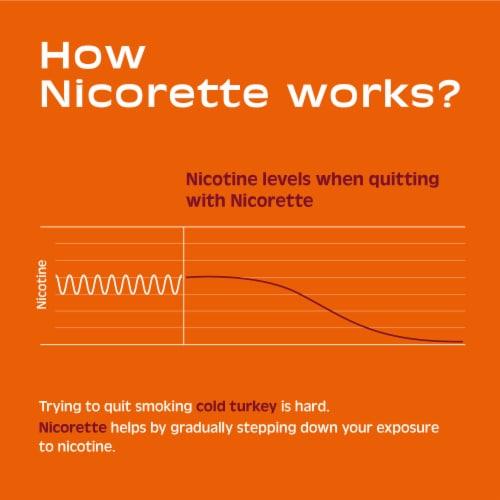 Nicorette White Ice Mint Nicotine Gum 2mg Perspective: top