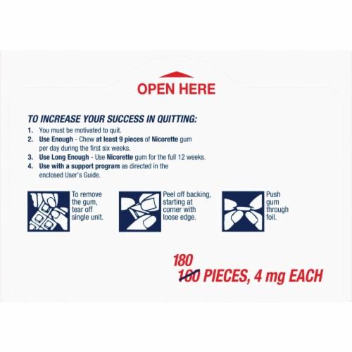 Nicorette Fruit Chill Nicotine Gum 4mg Bonus Pack Perspective: top