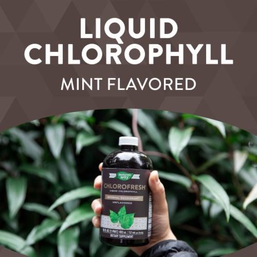 Nature's Way Chlorofresh® Liquid Chlorophyll Mint Perspective: top