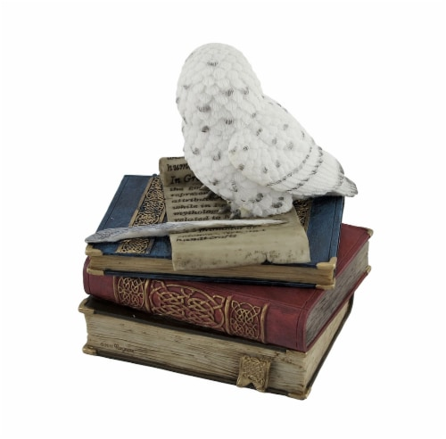 Wise Snow Owl Resting on Scholar`s Books Trinket Box Perspective: top