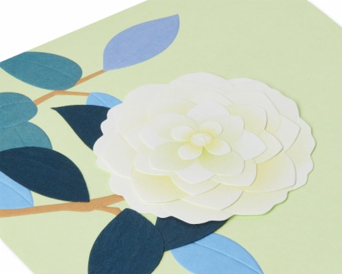 Papyrus Blank Card (White Rose) Perspective: top