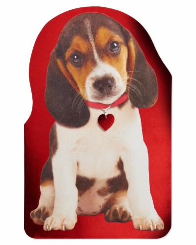 American Greetings #56 Valentine's Day Card (Puppy) Perspective: top
