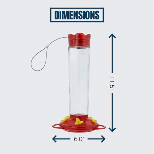 MEKKAPRO Outdoor Hummingbird Feeder Made from Glass, 5 Nectar Feeding Stations (20 Ounce) Perspective: top