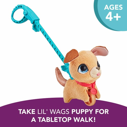 Furreal Walkalots Lil' Wags Puppy Toy Perspective: top