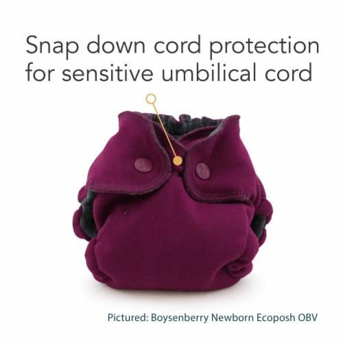 Ecoposh OBV Newborn AIO Fitted Cloth Diaper Glacier Perspective: top