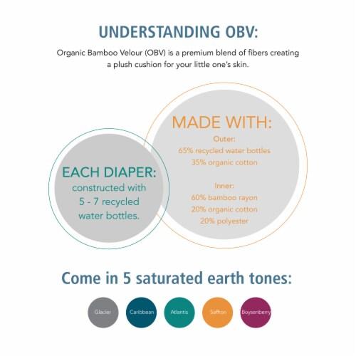 Ecoposh OBV Training Pants | Caribbean (Blue) Medium 2T/3T Perspective: top
