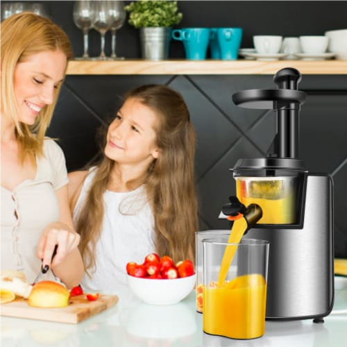 Costway Slow Masticating Juicer Cold Press Stainless Steel w/ Brush Perspective: top