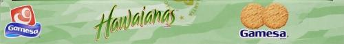 Gamesa Cookies Hawaianas Coconut Flavored Snacks Perspective: top