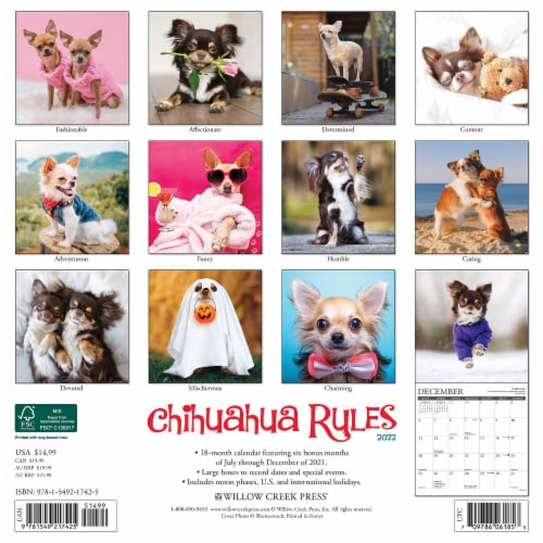 Chihuahua Rules 2022 Wall Calendar (Dog Breed) Perspective: top