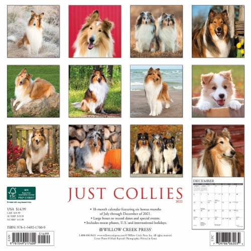 Just Collies 2022 Wall Calendar (Dog Breed) Perspective: top