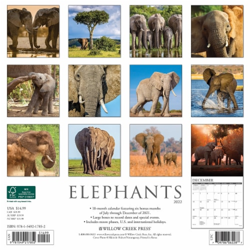 Elephants 2022 Wall Calendar Perspective: top