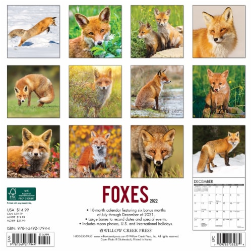 Foxes 2022 Wall Calendar Perspective: top