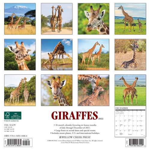 Giraffes 2022 Wall Calendar Perspective: top