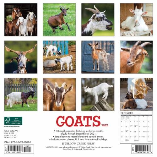 Goats 2022 Wall Calendar Perspective: top