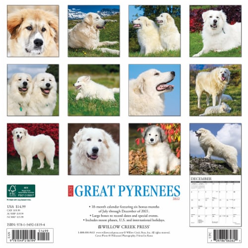 Just Great Pyrenees 2022 Wall Calendar (Dog Breed) Perspective: top