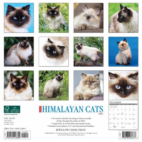 Just Himalayan Cats 2022 Wall Calendar (Cat Breed) Perspective: top