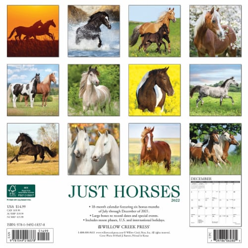 Just Horses 2022 Wall Calendar Perspective: top