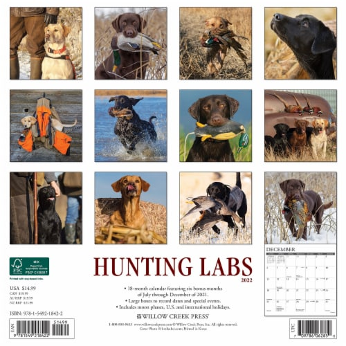 Hunting Labs 2022 Wall Calendar, (Labrador Retriever Dogs, Dog Breed) Perspective: top