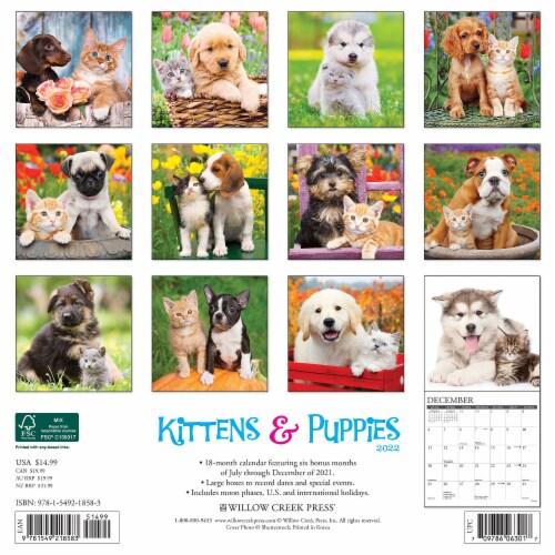 Kittens & Puppies 2022 Wall Calendar Perspective: top