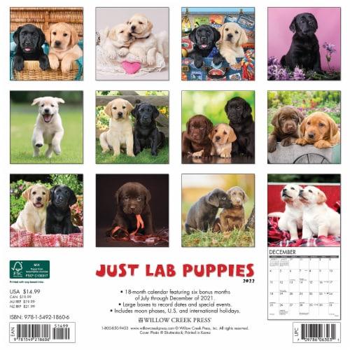 Just Lab Puppies 2022 Wall Calendar (Labrador Retriever Dog Breed) Perspective: top