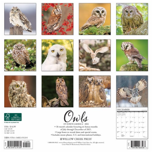 Owls 2022 Wall Calendar Perspective: top