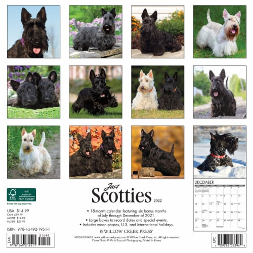 Just Scotties 2022 Wall Calendar (Dog Breed) Perspective: top