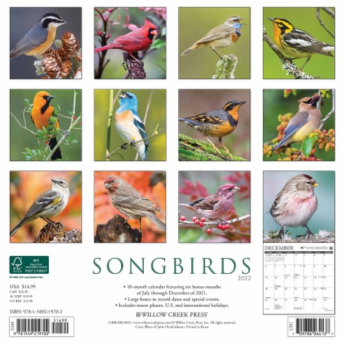 Songbirds 2022 Wall Calendar Perspective: top