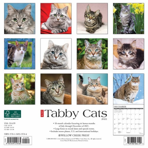 Just Tabby Cats 2022 Wall Calendar (Cat Breed) Perspective: top