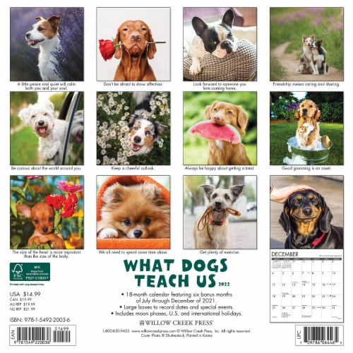 What Dogs Teach Us 2022 Wall Calendar Perspective: top