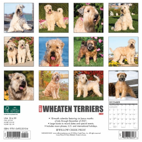 Just Wheaten Terriers 2022 Wall Calendar (Dog Breed) Perspective: top