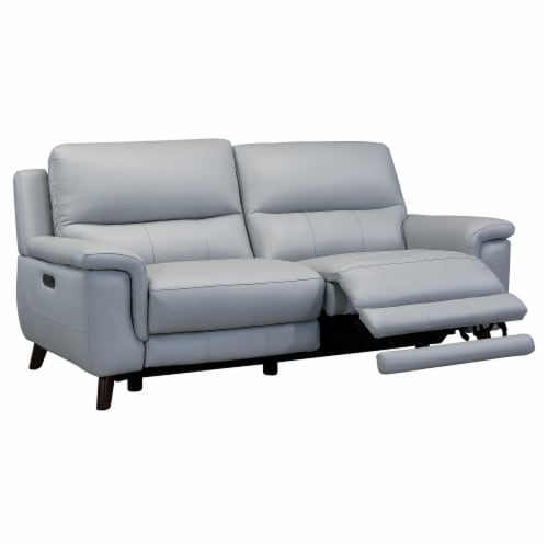 Lizette Contemporary Sofa in Dark Brown Wood Finish and Dove Grey Genuine Leather Perspective: top